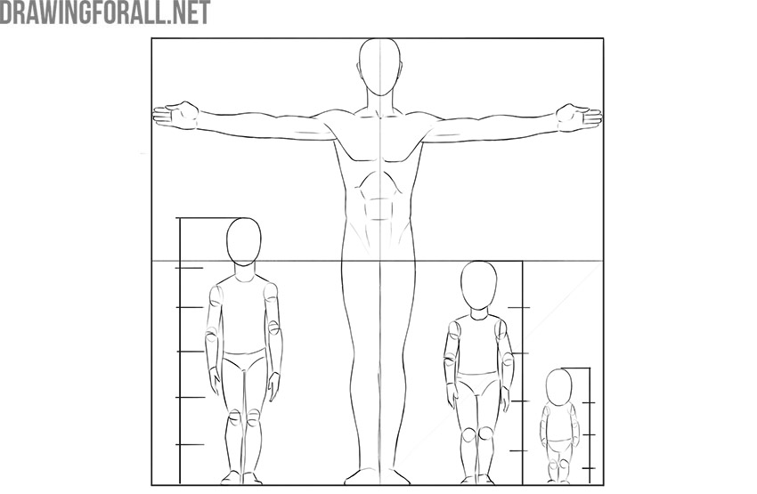 proportions in drawing