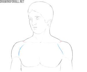 Human shoulders anatomy for artists