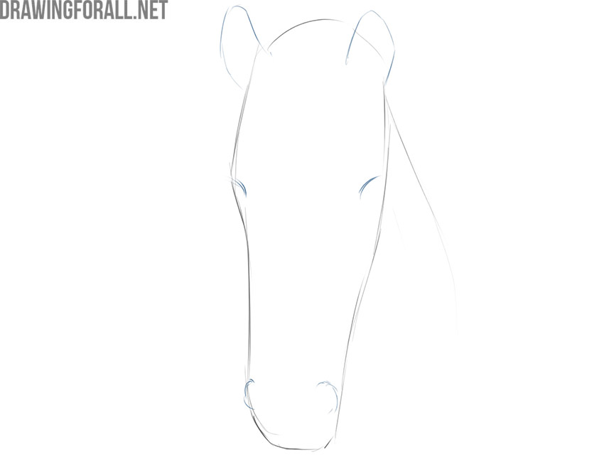 how to draw a face of a horse
