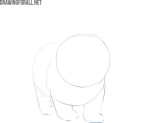 how to draw cute kitty cat step by step for beginners