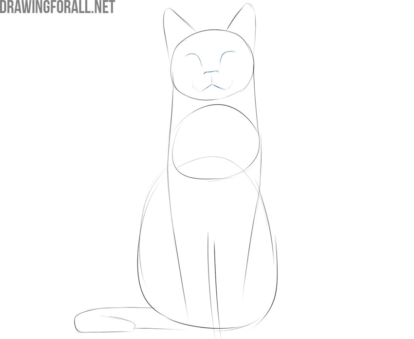 how to draw a cat sitting front view