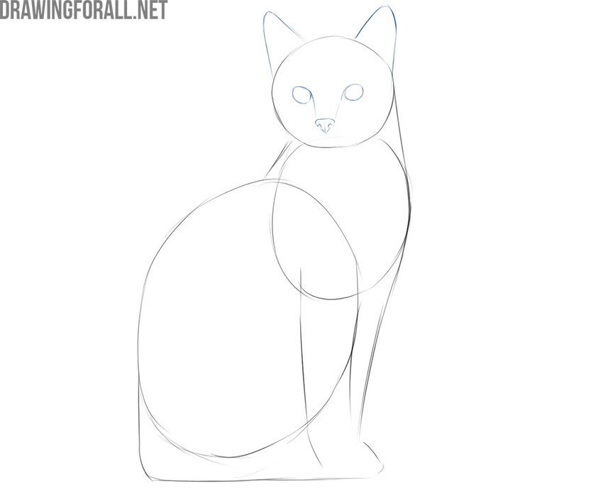 how to draw a simple cat face