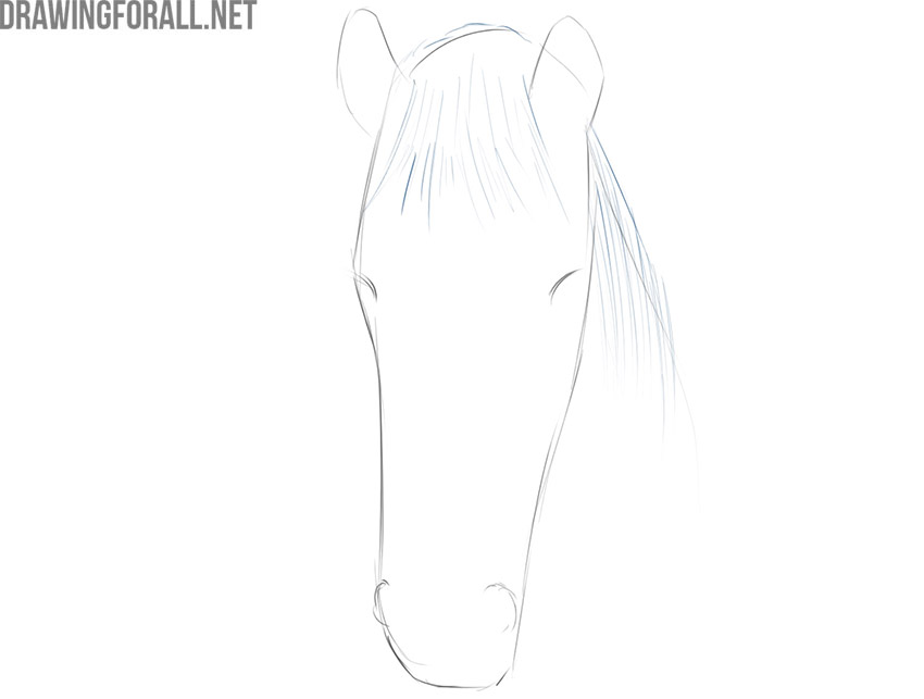 how to draw an easy horse face