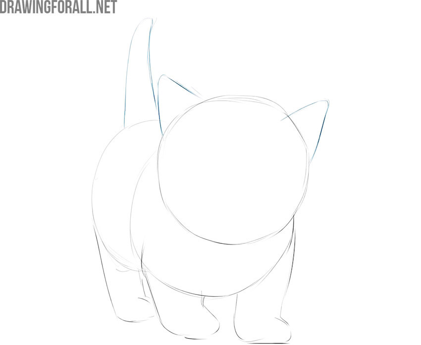 how to draw an easy kitty cat
