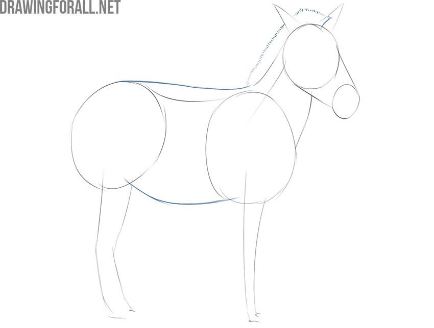 how to draw an easy zebra