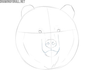 how to draw a bear face for beginners