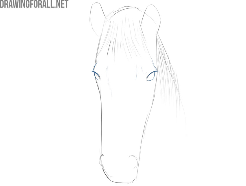 how to draw a horse face easy