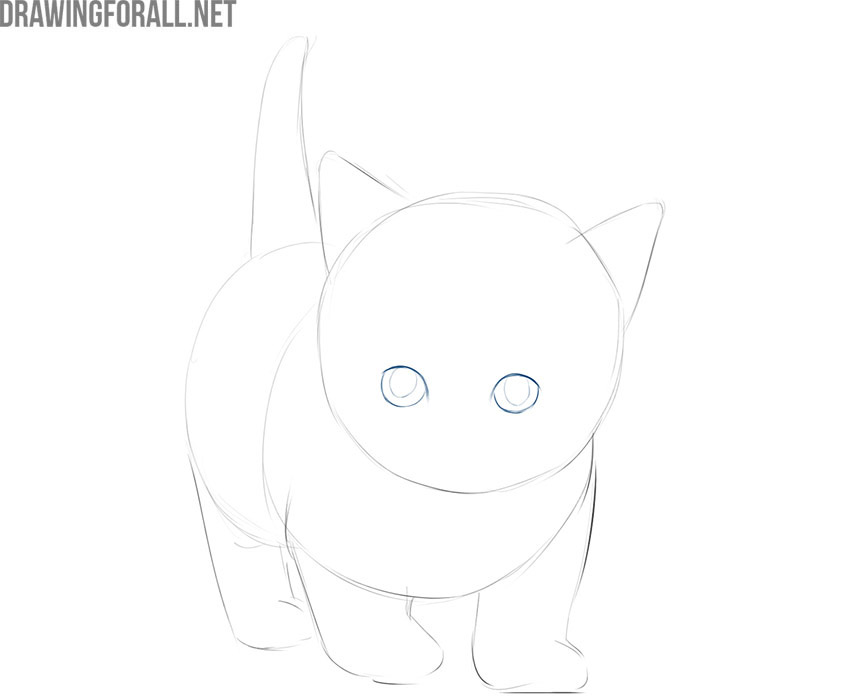 how to draw a kitty cat face