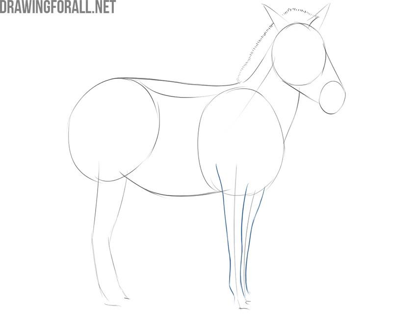 how to draw a realistic zebra easy