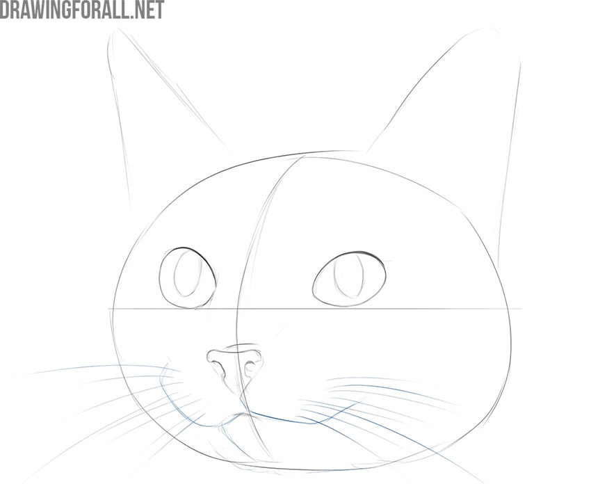 how to draw a cute cat face easy
