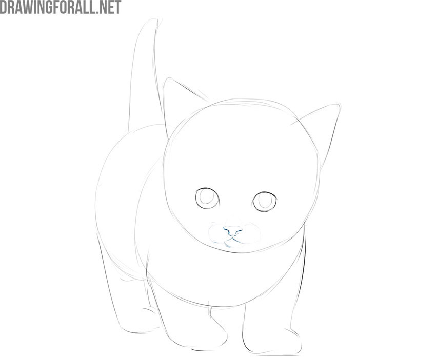 how to draw a cute kitty cat step by step