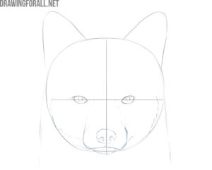 how to draw a fox face realistic