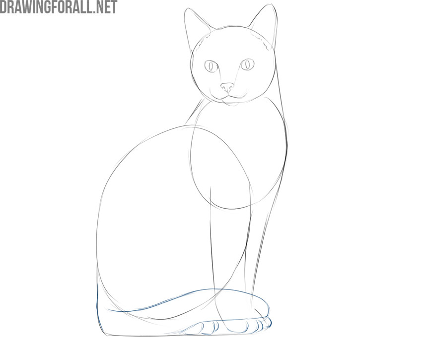 how to draw a simple cat head