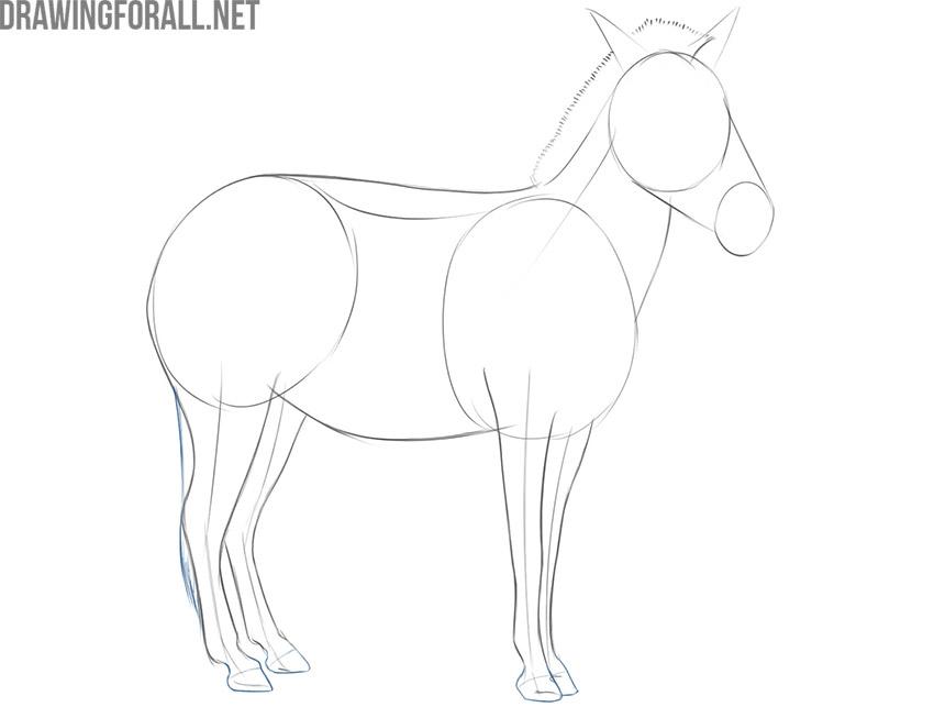 easy way to draw a zebra
