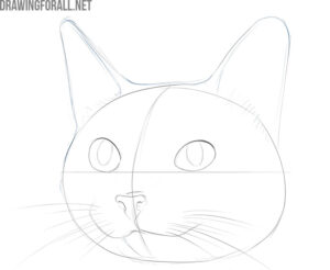 how to draw a cute cat face