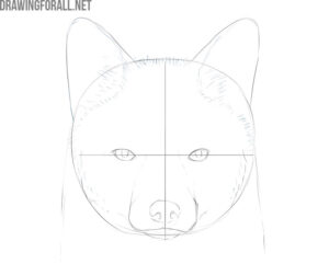 how to draw a fox face step by step for beginners