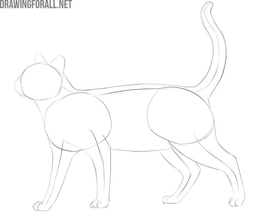 how to draw a cat easy and cute