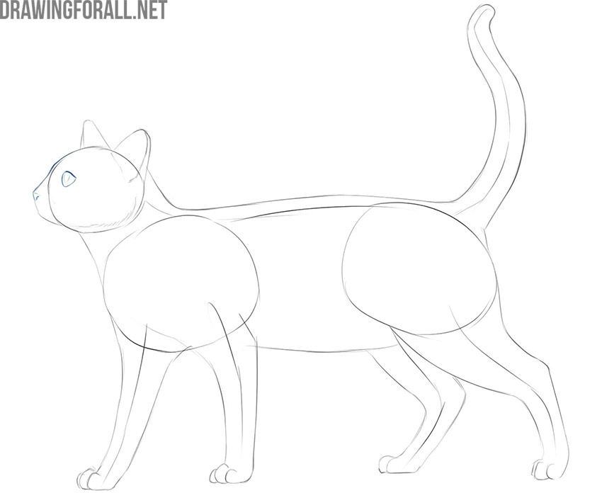 how to draw a cat easy for kids