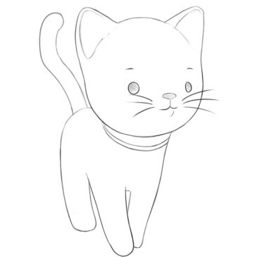 How to Draw a Cartoon Cat Easy