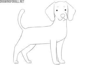 how to draw a cartoon dog
