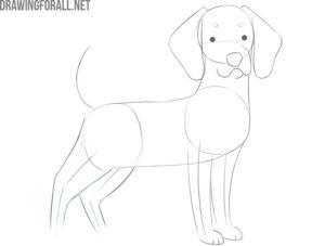 how to draw a cartoon dog face
