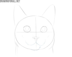 how to draw a cat face step by step