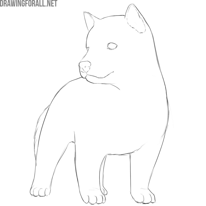 how to draw a cute dog easy