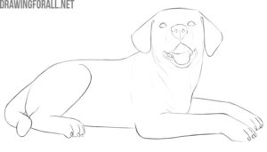 how to draw a dog lying down easy