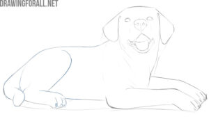 how to draw a dog lying down step by step