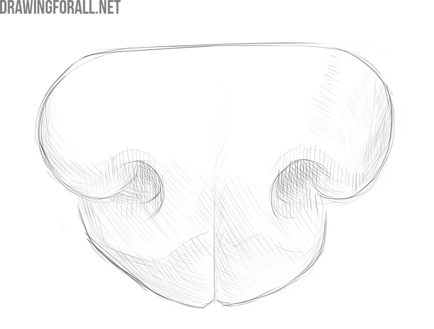 how to draw a dog nose