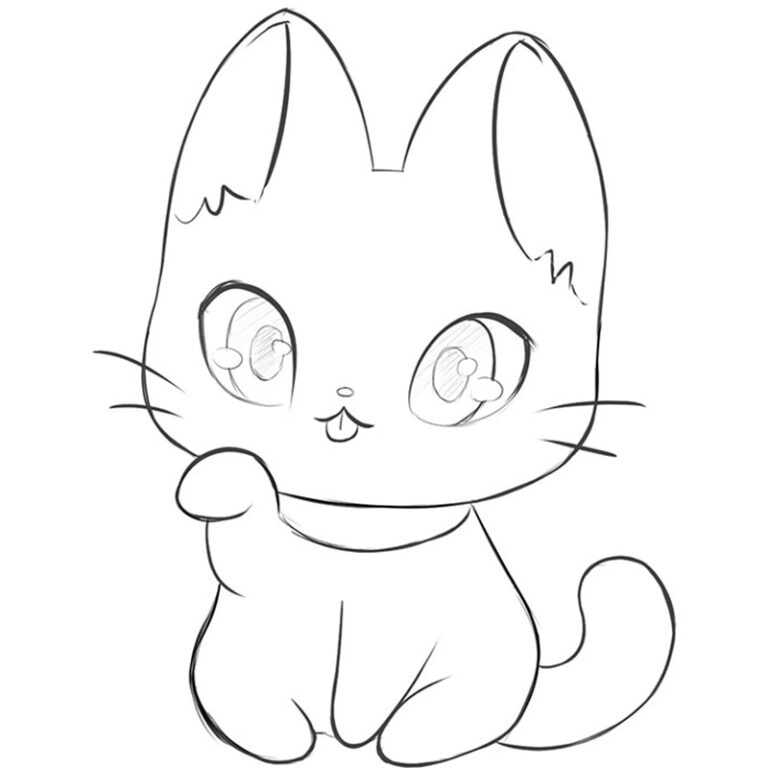 How to Draw a Kawaii Cat