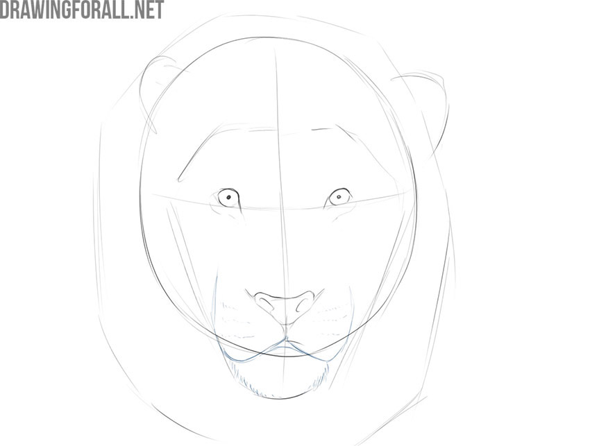 how to draw a lion face easy step by step