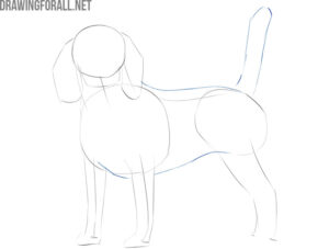 how to draw a realistic dog step by step easy