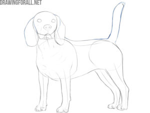 how to draw a realistic dog with a pencil