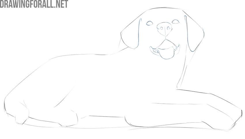 how to draw a simple dog lying down