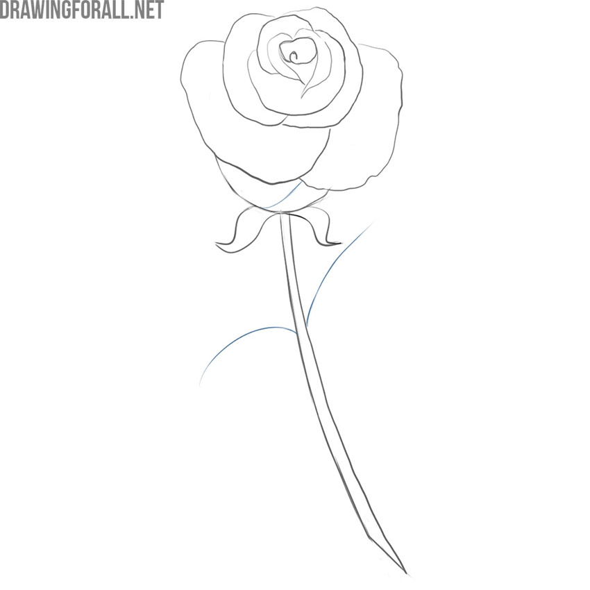 how to draw a simple rose easy