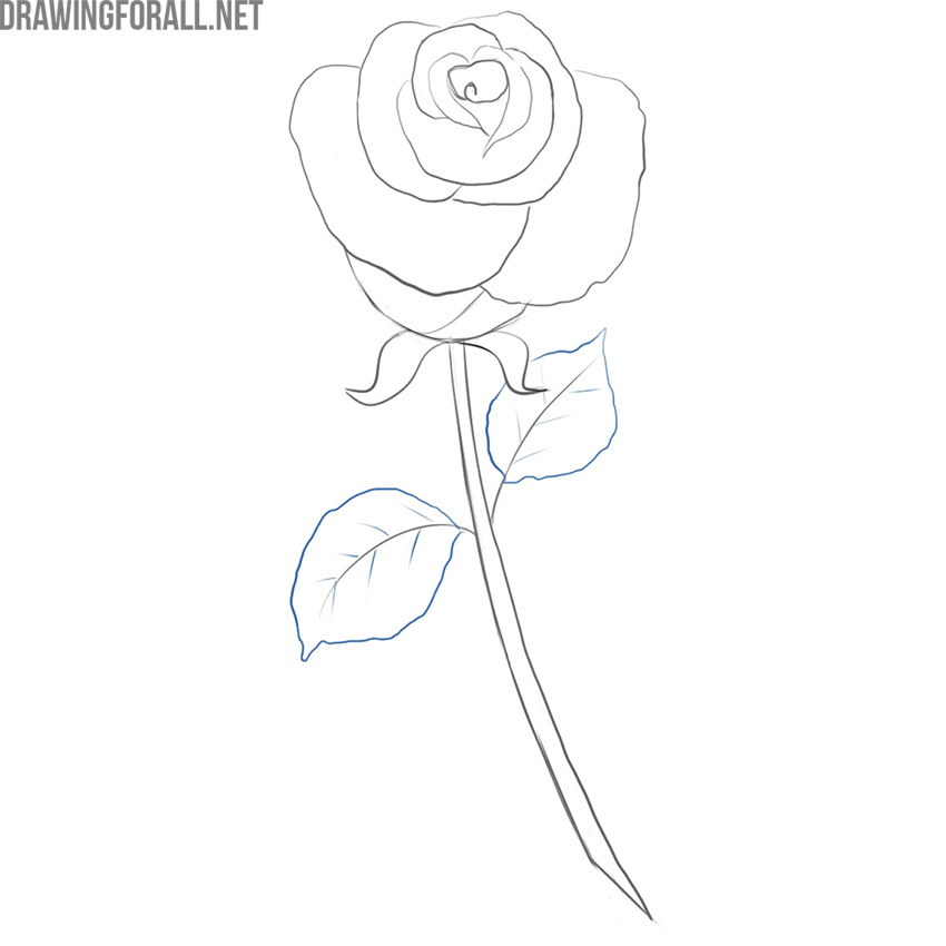 how to draw a simple rose for beginners
