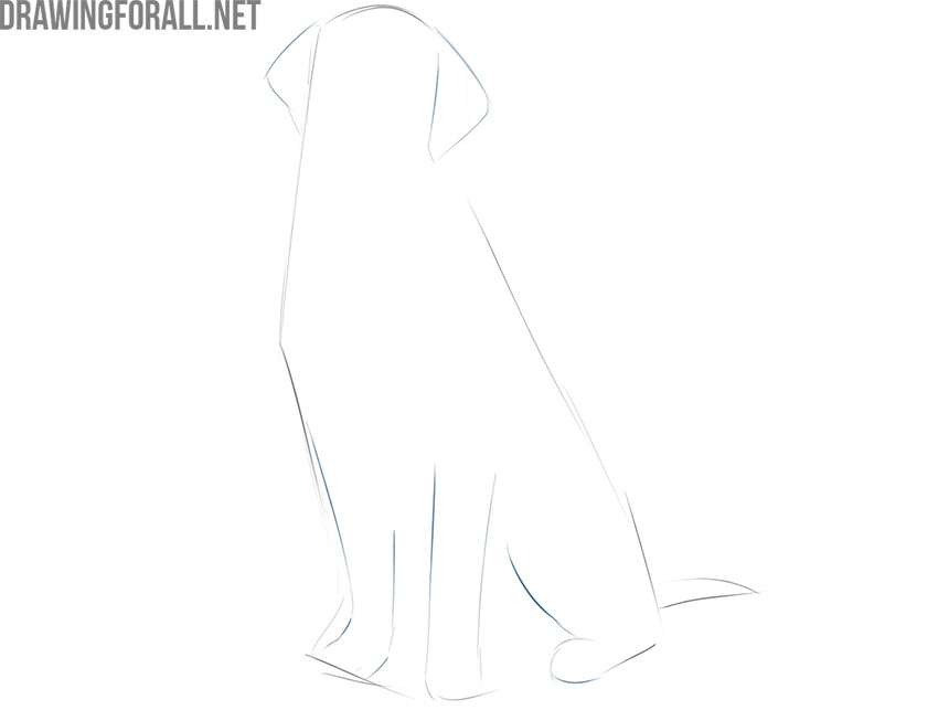 how to draw a simple sitting dog
