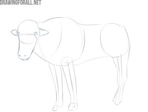 how to draw a simple yak