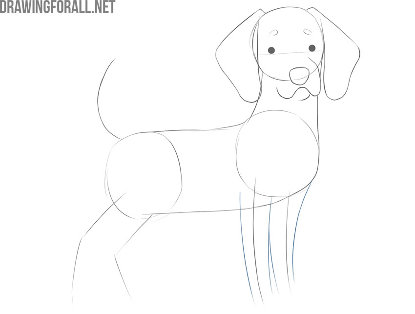 how to draw an easy cute cartoon dog