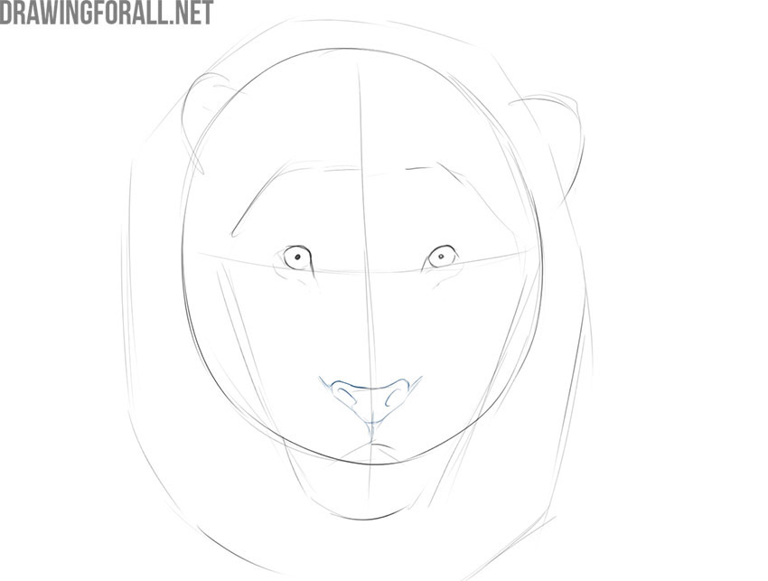 how to draw an easy lion face