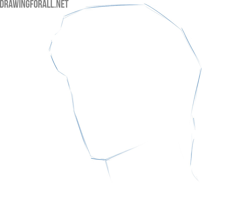 How to draw a face portrait